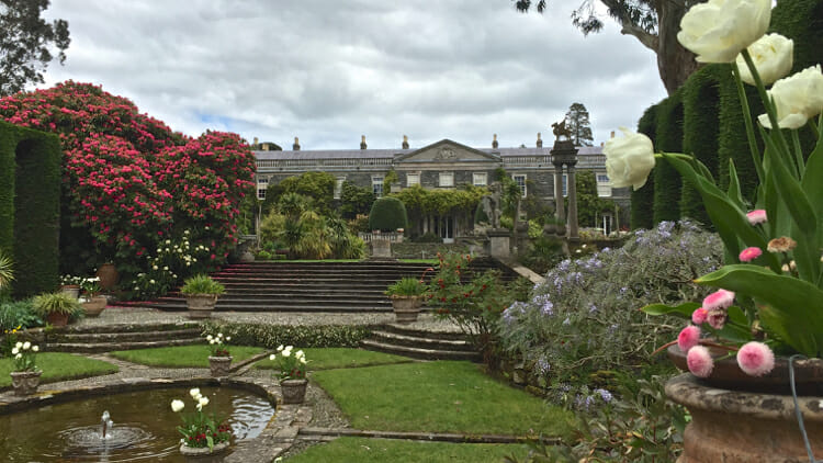 photo, image, garden, solo travel northern ireland