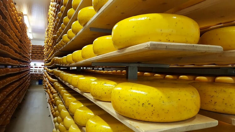 photo, image, gouda, oxford county cheese trail