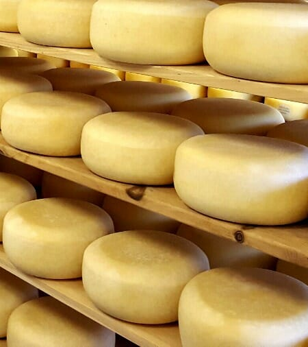 photo, image, cheese, oxford county cheese trail
