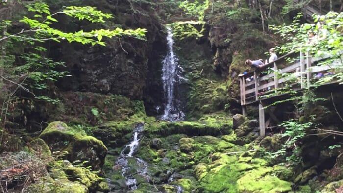 Water low at Dickson's Falls