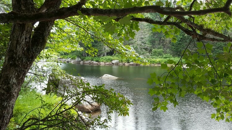 photo, image, tusket river, trout point lodge