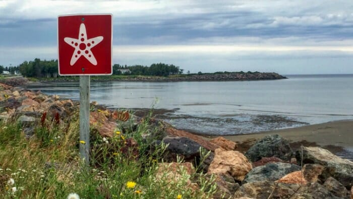 Like the Acadian Coastal Route in New Brunswick, many established road trip routes are well signed. There's little chance of getting lost.