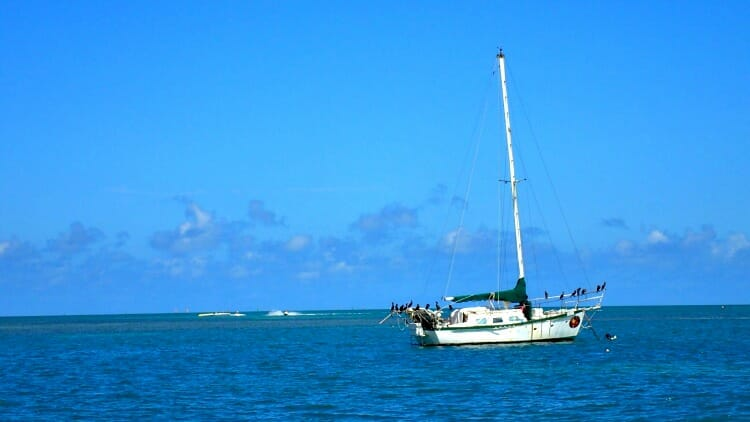 photo, image, sailboat, florida keys, usa