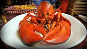 Flavors of Nova Scotia: My Top 5 Tastes