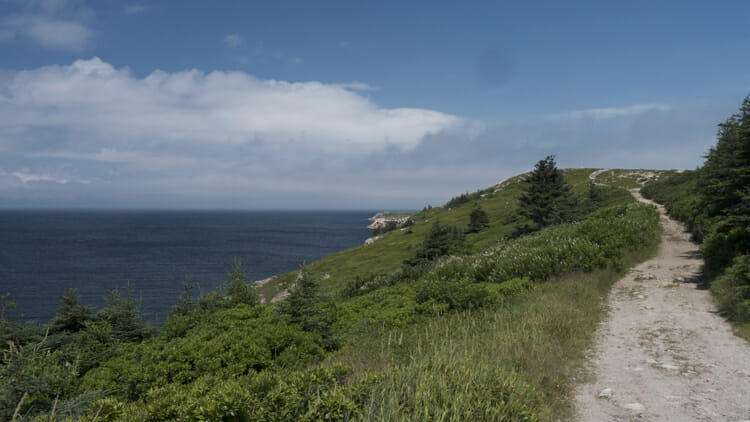 The trail up to the cape at White Point.