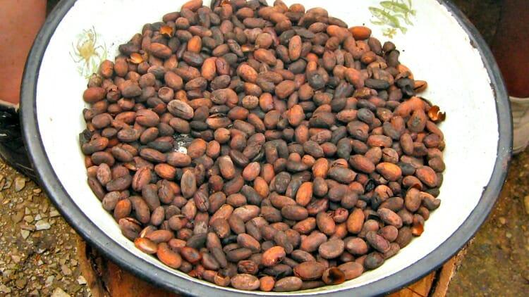 photo, image, cacao beans, cusco, peru