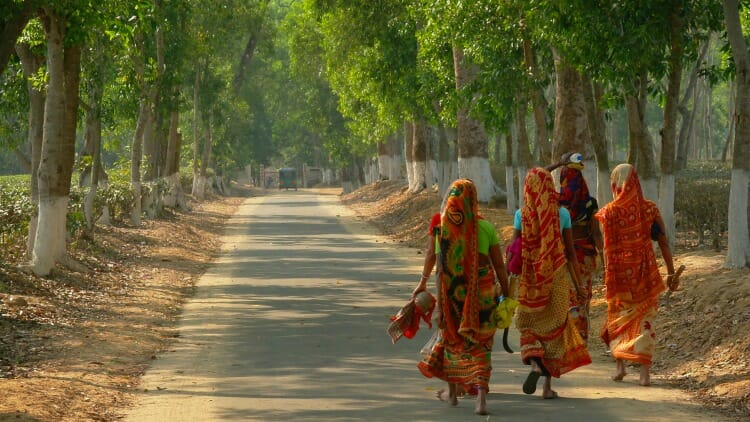 photo, image, tea pickers, finlay's tea estate, srimangal, bangladesh