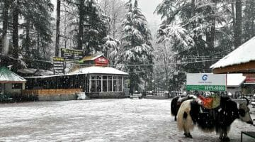 Pic of the Week: Snowfall in Manali, India