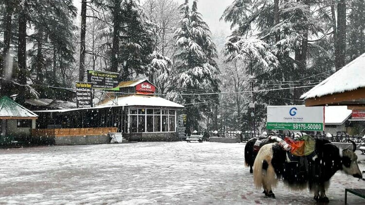 photo, image, snow, manali, india