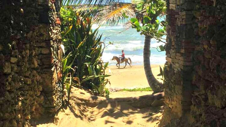 photo, image, horseback riding, cabarete, dominican republic