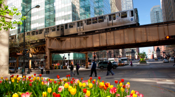 Budget Chicago: 32 Free and Low-Cost Tips