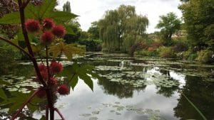 A Day in Monet's Gardens