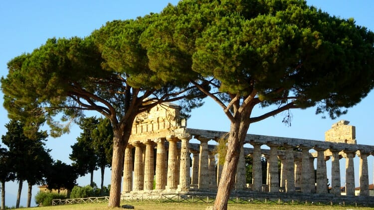 photo, image, temple, paestum, italy