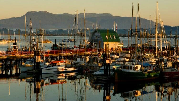 photo, image, boats, food wine western canada