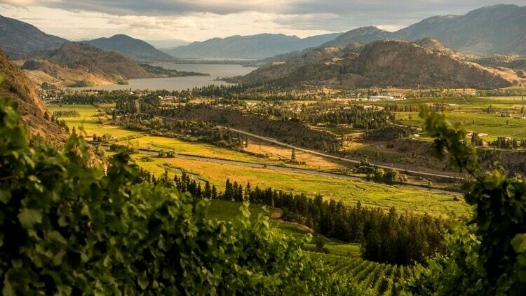 photo, image, okanagan valley, food wine western canada