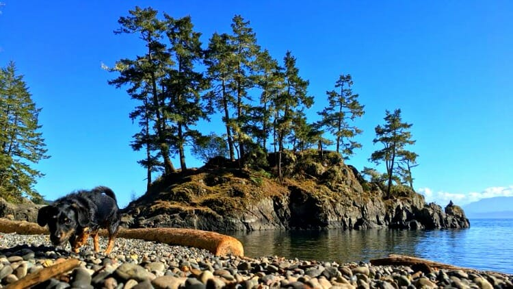 photo, image, east sooke park, western canada photos