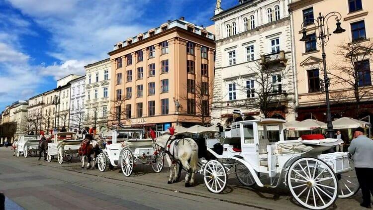 photo, image, horse and carriage, krakow, poland