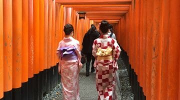 Solo Travel Kyoto: Three Days of Classic Sights and a Few Surprises
