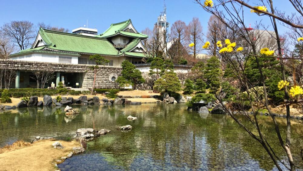 photo, image, japan, essential life skills