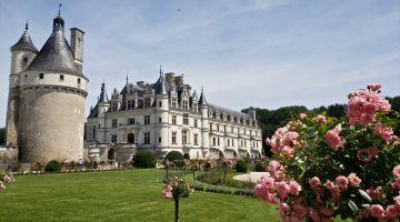 Solo Travel the Loire Valley: 500th Anniversary of the French Renaissance