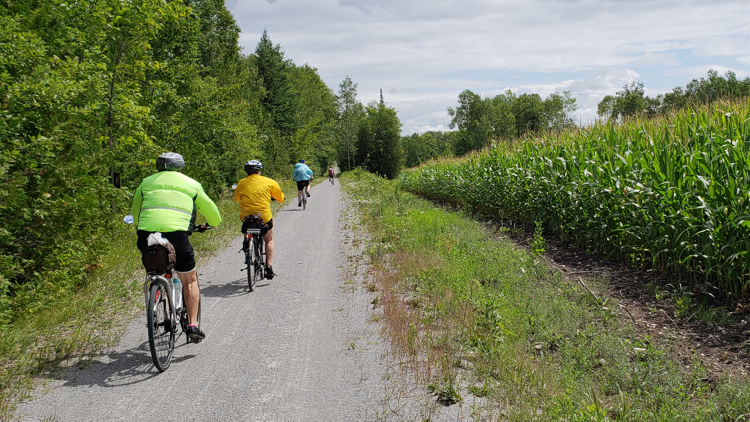 photo, image, cyclists, bike ontario