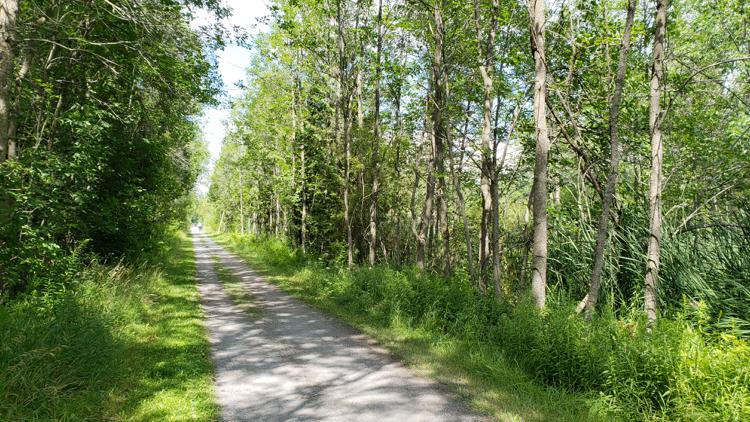 photo, image, rail trail, bike tours