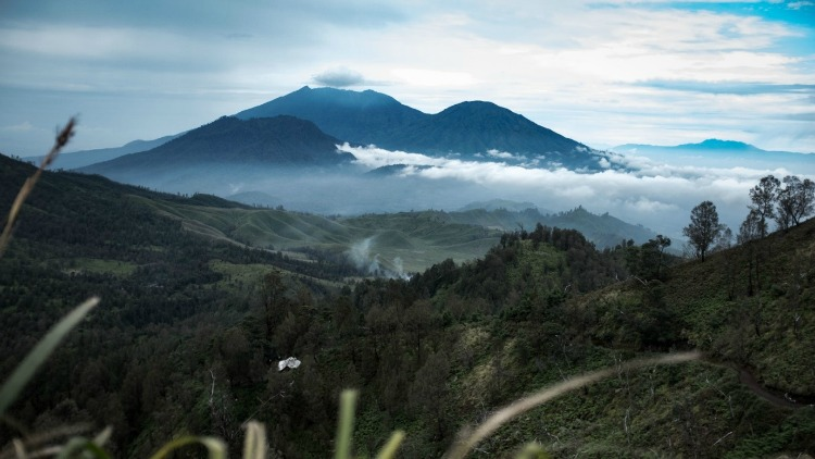 photo, image, mount ijen, indonesian jungle