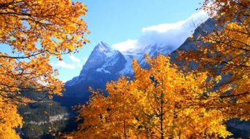 Pic of the Week: Autumn in Murren, Switzerland
