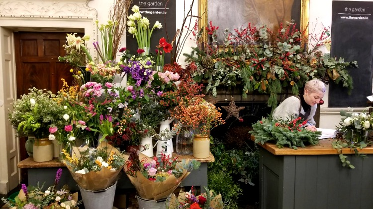 photo, image, flower shop, exploring ireland