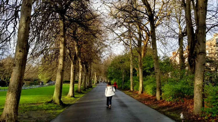 photo, image, st, stephen's green, exploring ireland
