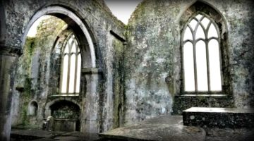 photo, image, ross errilly friary, ireland