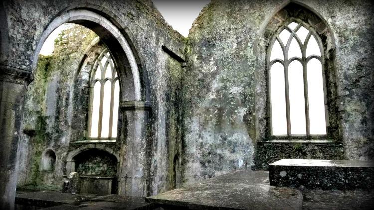 photo, image, ross errilly friary, ireland