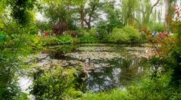 photo, image, monet's garden, giverny