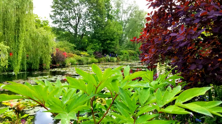 photo, image, monet's garden, giverny, river cruise