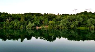 photo, image, reflection on water, solo river cruise tips