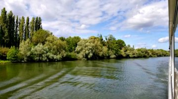 photo, image, trees, seine river, river cruises for solo travelers