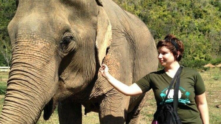solo travel Thailand, Elephant Nature Park