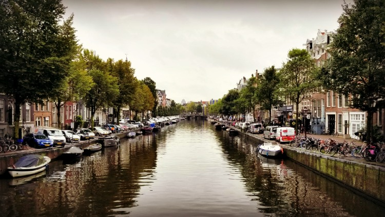 canal, solo in amsterdam