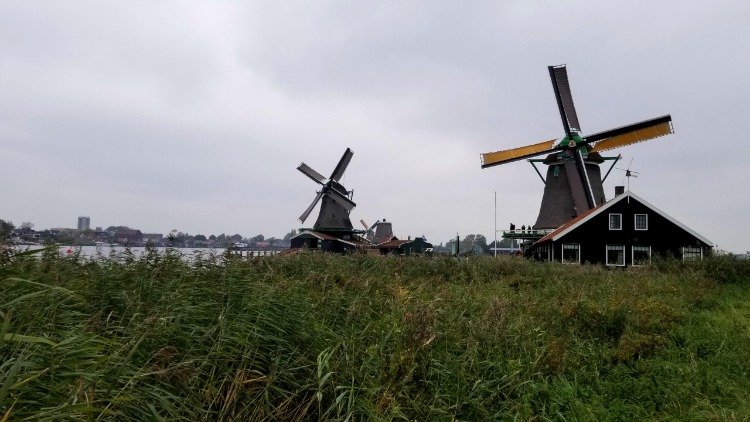 windmills, solo in amsterdam